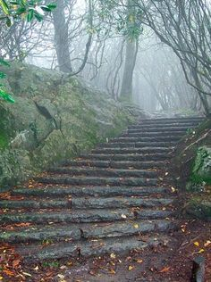 Wouldn't this be both empowering and beautiful to run? Steps into the mist, by esywlkr.