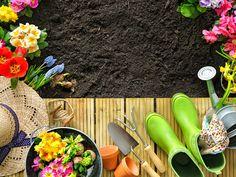 Garten Planer Für Den Frühling