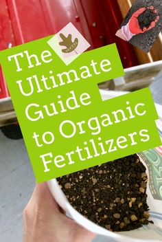 The ULTIMATE Guide to Organic Fertilizers! Here is truly everything you need to know about natural plant food. It does work, you just have to know a tiny bit about how and why. #organic #plants #permaculture #fertilizer #yard #kids #pets #safe #garden #gardening Tomato Fertilizer, Fertilizer For Plants, Organic Fertilizer, Fall Vegetables, Organic Vegetables, Growing Vegetables, Growing Tomatoes, Veggies, Organic Gardening Tips