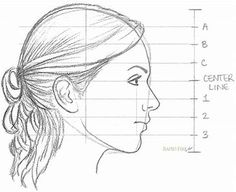 Image result for drawing proportions of female face side view