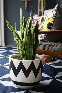 Fenton & Fenton handpainted pot plant by popandscott