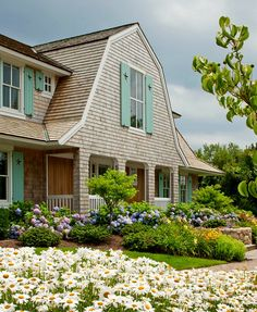 shingled house turquoise shutters Cape Cod- weird style but i like the details/landscaping
