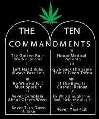 Image result for stoner quotes tumblr