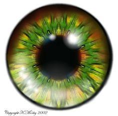 greenlarge.jpg (446×440)