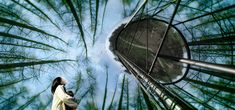 West 8 Urban Design & Landscape Architecture / projects / Water silo Beersel