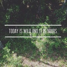 today is wild and it is yours