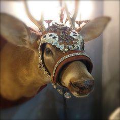 One of a kind handmade helmet halter for deer. www.zen-cowgirl.com #vicking #deer #halter #zencowgirl