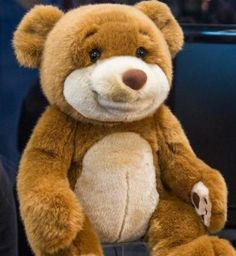 If Teddy Ruxpin and Siri had a stuffed animal baby, it would be the WikiBear.