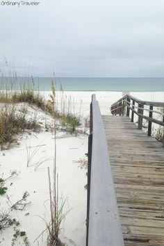 Six Must-Dive Sites in Pensacola, Florida