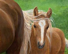 'Bright Eyes' by Persis Clayton Weirs Original Paintings