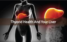 Did you know that the majority of T4 to T3 conversion doesn't happen in your thyroid gland, but in your liver? Liver and thyroid connection!