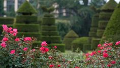 Famous Gardens of the World | Rose & Topiary Garden - Longwood Gardens