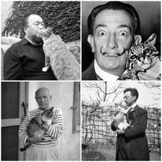 Ai Wei Wei, Dali, Picasso & Kandinsky are cat people.