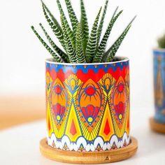 Decorated Flower Pots, Painted Flower Pots, Ceramic Flower Pots, Painted Pots, Flower Planters, Planting Succulents, Planting Flowers, Succulent Plants, Cacti
