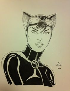 Catwoman by Ethan Van Sciver *