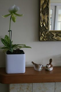 Mantel with slipper orchid and birds.