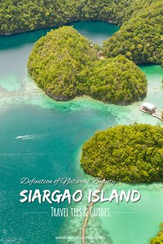 Beautiful white sand beaches, clear waters, exotic wildlife, large mangrove forests, enchanting lagoons... Siargao has it all! Definition Of Nature, Siargao Island, Things To Do, How To Memorize Things, Mangrove Forest, White Sand Beach, Forests, Beautiful Beaches, Philippines