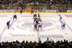 Hockey Pictures Find best latest Hockey Pictures for your PC desktop background & mobile phones.