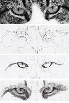 Como dibujar ojos de gato y que parescan reales