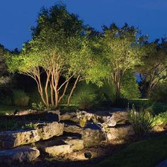 Landscaping With Rocks, Modern Landscaping, Outdoor Landscaping, Backyard Landscaping, Landscaping Ideas, Backyard Ideas, Modern Landscape Lighting, Landscape Design, Garden Design