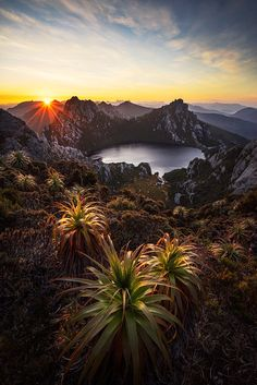Lake Oberon, Western Arthurs - Tasmania Australia by Chris Wiewiora on Beautiful World, Beautiful Places, Beautiful Pictures, Landscape Photography, Nature Photography, Australian Photography, Photography Tips, Travel Photography, Photo Voyage