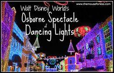 The Osborne Family Spectacle of Dancing Lights #DisneyVacation #OsborneLights