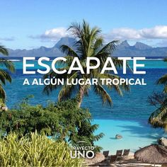 #Inspiration #travel #quotes #travelquotes #viajes #frases #viajeros #tropical #playas