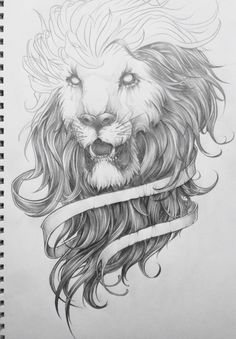 Behance :: The Lion Sketch exploration. by Charles AP