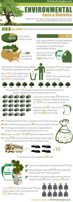 Infografía: El medioambiente en datos y estadísticas