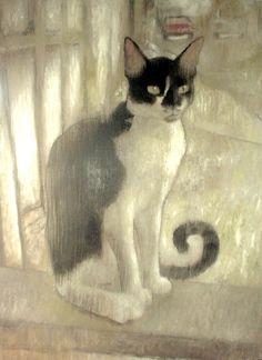 stray cat by 413 / cj tanedo. °