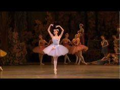 HATERS GONNA HATE !! Don Quichotte (Mariinsky Ballet) - Le rêve de Don Quichotte (variation de la Reine des dryades) - YouTube