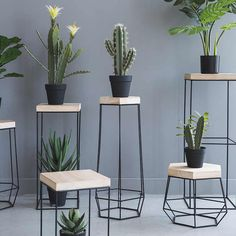 Decorate your home in class modern nordic style with the delightful Nico iron frame geometric side table! Perfect for displaying indoor plants or photo frames. Made from metal. Free Worldwide Shipping & Money-Back Guarantee Decorating Your Home, Diy Home Decor, Room Decor, Geometric Side Table, Modern Side Table, Side Table Decor, Metal Side Table, Metal Plant Stand, Modern Plant Stand