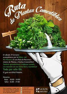 Ruta de plantas comestibles en Alcalá de Henares