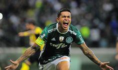 Dudu comemora gol da virada do Palmeiras 6376ada5c90db