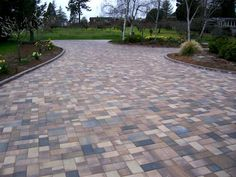 driveway with variety