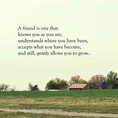 Best Friend Gift Friendship Quote
