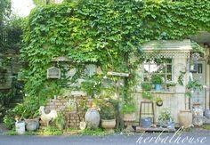 Garden Cafe, Garden Shop, Balcony Garden, Home And Garden, Shabby Chic Garden, Small Space Gardening, Gardening Tips, Backyard, Patio