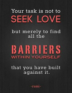 Your task is not to seek love but merely to find all the barriers within yourself that you have built against it.  Rumi