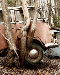 Pink VW Bus lifted by Tree Photograph by CaraFullerPhotos on Etsy Volkswagen T1, T3 Vw, Combi Ww, Combi Split, Vw Cabrio, Kdf Wagen, Rust In Peace, Vw Vintage, Rusty Cars