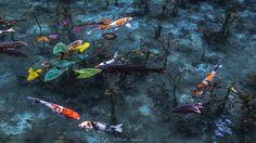 Monet pond   by keita.asakura