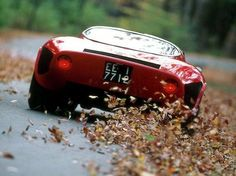 Spinning Her wheels on the back road. ..Alfa Romeo 33 Stradale.