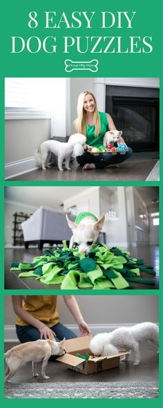 To keep things fresh, I rotate my dog's interactive toys. Check out 7 DIY dog puzzles you can make at home! Homemade Dog Toys, Diy Dog Toys, Best Dog Toys, Diy Puzzle Toys For Dogs, Animal Projects, Diy Projects, Dog Enrichment, Dog Collar Tags, Dog Collars