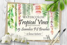 Tropical Vines Seamless PS Brushes by Fluffy Unicorn on @creativemarket