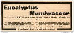 Original-Werbung/Inserat/ Anzeige 1899 - EUCALYPTUS MUNDWASSER / SCHWARZLOSE SÖHNE  BERLIN ca. 35 x 90 mm