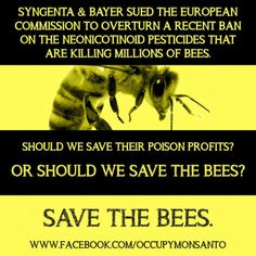 Bayer (Monsanto) Save the Bees Save Our Earth, Save The Planet, Refugees, Bee Facts, I Love Bees, Bee Friendly, Save The Bees, Environmental Issues, Bees Knees