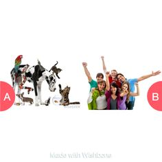 Animals or People Tap to vote http://sms.wishbo.ne/U1ak/xbpsqG7ppt