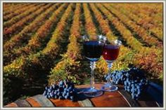 North Utica, IL - Come tour the Illinois River Winery and visit the tasting room and outdoor wine garden, featuring award-winning wines made in the Illinois River Valley. Open everyday.