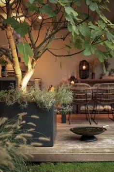 Garden Deco, Garden Yard Ideas, Garden Spaces, Garden Landscaping, Rooftop Garden, Balcony Garden, Outdoor Rooms, Outdoor Gardens, Growing Gardens
