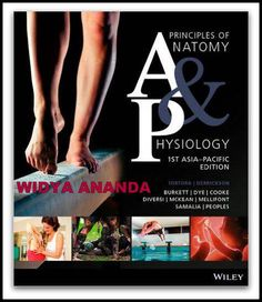 Principles of Anatomy & Physiology 1st edition  By. Tortora  Product Details Paperback Publisher: John Wiley & Sons Australia Ltd; 1st Asia-Pacific ed edition  Language: English ISBN-10:  ISBN-13: 978- Product Dimensions: 5.9 x 0.6 x 9.8 inches    Anatomy and physiology students face the challenge of synthesising a lot of information into conceptual understanding. Principles of Anatomy and Physiology, 1st Asia-Pacific edition,empowers them to improve their learning outcomes and...