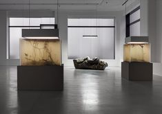 Pierre Huyghe | In Border Deep | 2014 | Hauser & Wirth | London, United Kingdom